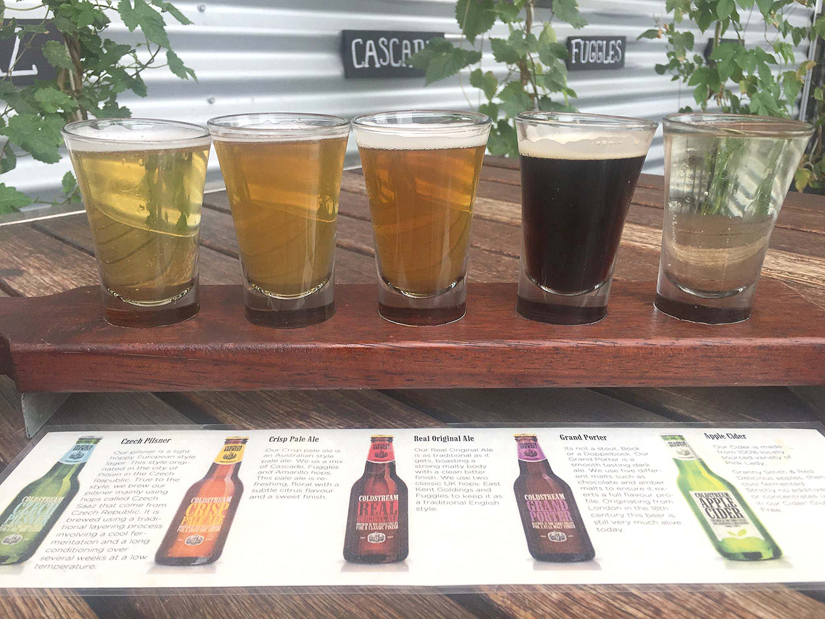 Beer and cider flight at the Cold Stream Brewery